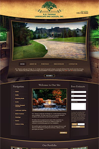 Our Stunning Website Designs